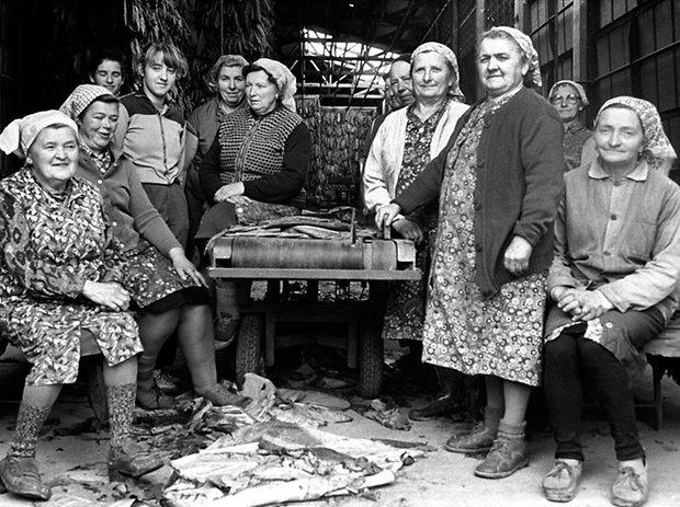 Frauen in der Tabakverarbeitung, 1988 © Gerhard Weber